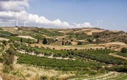 Ветровая электростанция и оливка field с голубым небом и облаками на острове Крита, Греции стоковые фото