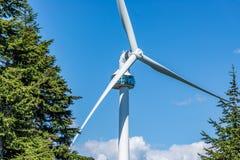 Ветротурбина горы тетеревиных, Ванкувер стоковое изображение