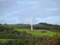 Ветротурбина, грациозно, сельская идиллия Стоковая Фотография