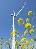 Ветротурбина против цветков голубого неба увиденных до конца желтых рапса стоковая фотография