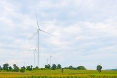 Ветротурбина сделала возобновляющую энергию на поле, голубом небе и предпосылке облака на Chaiyaphum Таиланде стоковое фото rf