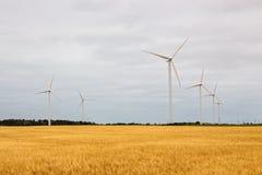 Ветротурбины в желтом поле Стоковые Изображения