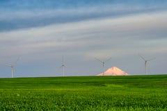 Ветротурбины в самом начале предыдущий свет рассвета Стоковые Фотографии RF
