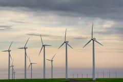 Ветротурбины в самом начале предыдущий свет рассвета Стоковая Фотография RF