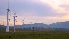Ветротурбины закручивая на заход солнца в Mohave Калифорнии сток-видео