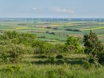 Ветротурбины и поля 3 рапса Стоковые Изображения RF