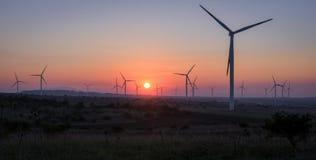 Ветротурбины на заходе солнца - концепции возобновляющей энергии Стоковые Фотографии RF