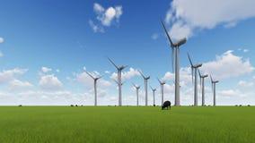 Ветротурбины на зеленых поле и овце сток-видео