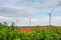 Ветротурбины производят электричество на поле вся плантация земледелия стоковые изображения rf