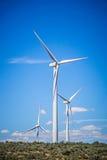 Ветротурбины производя электричество на ветреный солнечный день стоковые изображения