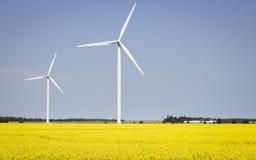 2 ветротурбины сидя в канола поле Стоковая Фотография
