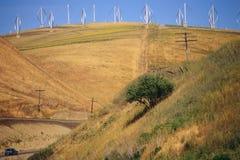 Ветротурбины Стоковое Фото