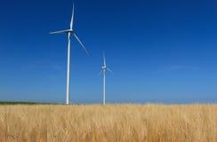 Ветротурбины Стоковое фото RF