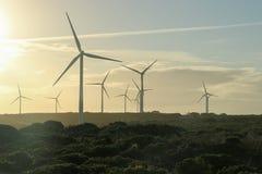 Ветротурбины silhouetted на сумраке Стоковые Изображения