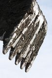 ветроуловитель Стоковое Изображение RF