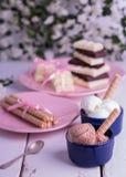 Ветроуловители мороженого шоколада и ванили с вафлей свертывают Стоковые Фото