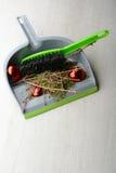 Ветроуловитель с щеткой, сухими хворостинами и сломленным шариком Стоковые Изображения