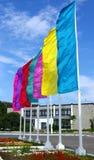 ветры флагов Стоковое Изображение