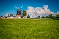 Ветрянка весной за полем зерна стоковые изображения