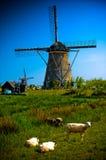 ветрянка взгляда сельской местности канала европейская стоковое фото rf