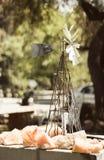 Ветрянка влюбленности Стоковые Фото