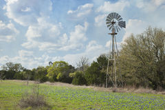 Ветрянка и bluebonnets в стране холма Техаса Стоковое Изображение