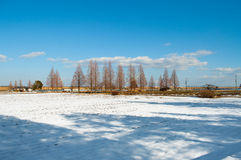 Ветрянка и Snowland против голубого неба Стоковые Изображения