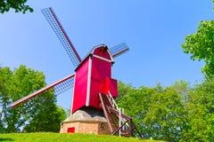 ветрянка лужайки brugge зеленая Стоковое Изображение