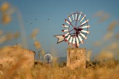 Ветрянка, Мальорка Стоковая Фотография RF