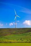 Ветрянка на зеленом луге Эколог Испании Стоковые Изображения RF