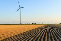 Ветрянка на полях фермера стоковые изображения rf