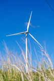 Ветрянка на холме Стоковое Изображение RF