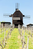 ветрянка Чешской республики деревянная стоковые фото