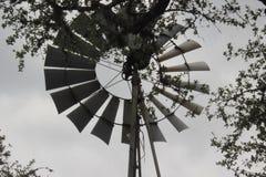 Ветрянка Стоковое Изображение RF