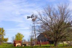 ветрянка 3 Стоковое Изображение RF