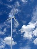 ветрянка Стоковые Изображения RF