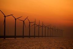 ветрянка Стоковая Фотография