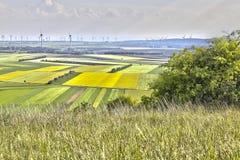 Ветрянка fields земля Стоковая Фотография RF