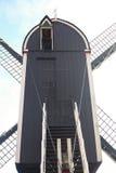 ветрянка leiden Стоковая Фотография