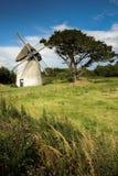 Ветрянка Tacumshane Wexford Ирландия стоковые фото