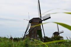 Ветрянки всемирного наследия Kinderdijk, Нидерландов стоковое изображение rf