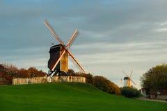 2 ветрянки в Брюгге, Бельгии Стоковое фото RF