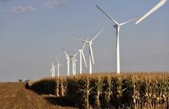 Ветрянки в будучи сжатым кукурузном поле Стоковая Фотография