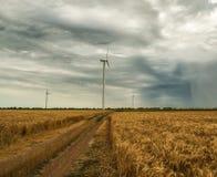 Ветрянки в поле с пшеницей Стоковое Изображение RF