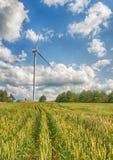 Ветрянки в поле Стоковая Фотография RF