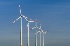 Ветрянки в ряд Стоковые Фото