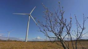 Ветрянки в Эстонии, Европе видеоматериал