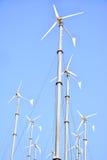 Ветрянки группы Стоковое Изображение RF
