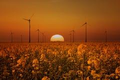 ветрянки захода солнца Стоковые Изображения RF