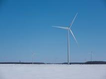 Ветрянки зимы Стоковые Изображения